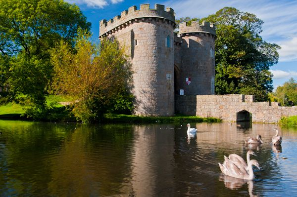 Whittington Castle photo, Swans in the moat