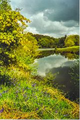 Winkworth Arboretum, Rowe's Flashe pool (c) Colin Smith