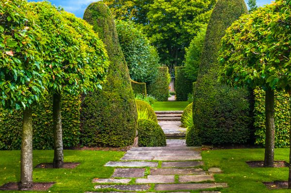 Wollerton Old Hall Garden, Photos & History