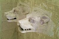 Woodchester Mansion, Wolf head carvings