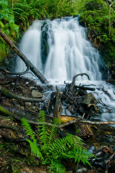 Tom Gill photo, The upper waterfall