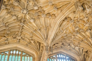 The ceiling vaulting