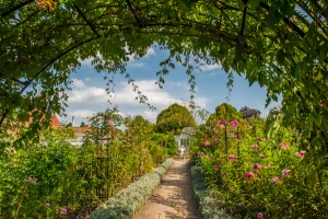 A colourful garden arch and path