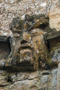 The 'Tree Nose' style Green Man