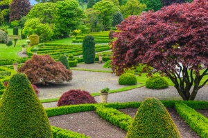 Topiary and formal parterre beds