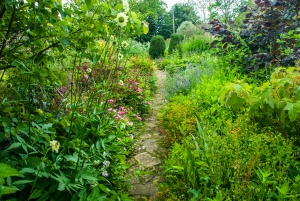 A lushly planted garden path