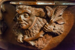 Woodwose misericord