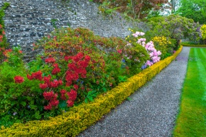 Colourful borders in the walled garden
