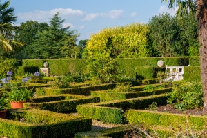 A formal parterre
