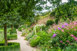A colourful garden walk