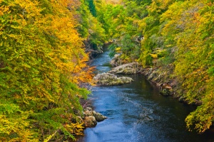 Killiecrankie Gorge in autumn