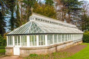 The Victorian greenhouse