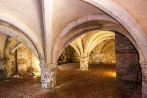 The 13th century cellarium