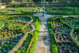 Tudor Knot Garden, New Place, Stratford upon Avon