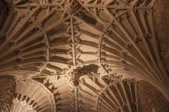 14th century fan vaulting, north aisle
