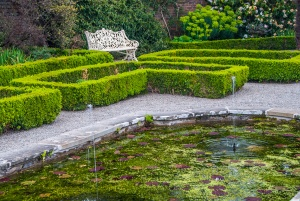 Formal garden hedges and a pool