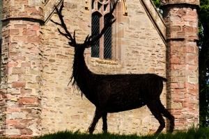 Stag sculpture on Moot Hill
