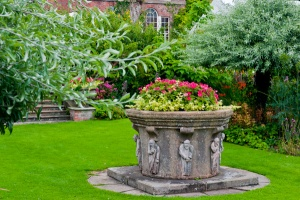Colour in the formal gardens