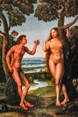 Adam and Eve, Flemish School