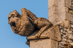 Gargoyle on St John's Church