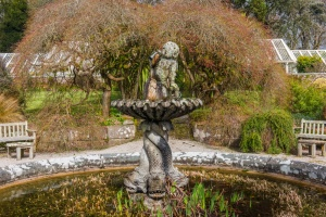 A fountain in the walled garden