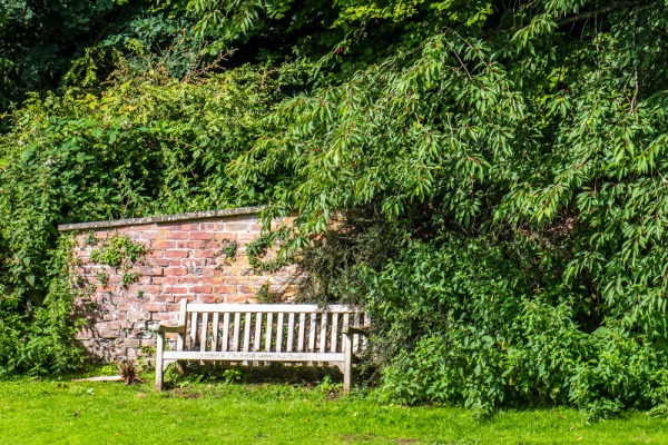 A pleasant bench at Allen Banks