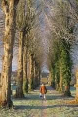 Walking across the wintry village green