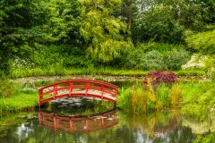 Bennetts Water Gardens, A picturesque oriental footbridge, Orfe Pond