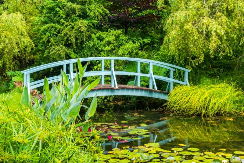 The Monet Bridge at Bennett's Water Gardens