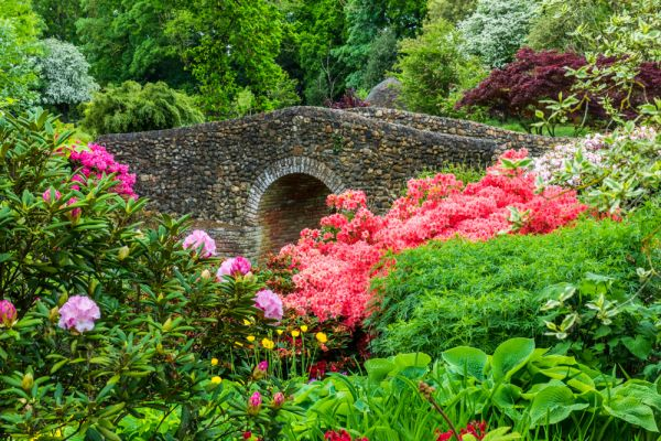 Bressingham Steam and Gardens photo, A colourful stone footbridge