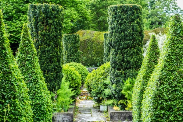 Topiary in the Sunk Garden