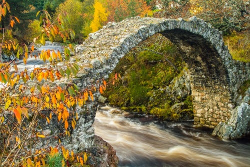 Carrbridge Packhorse Bridge in autumn