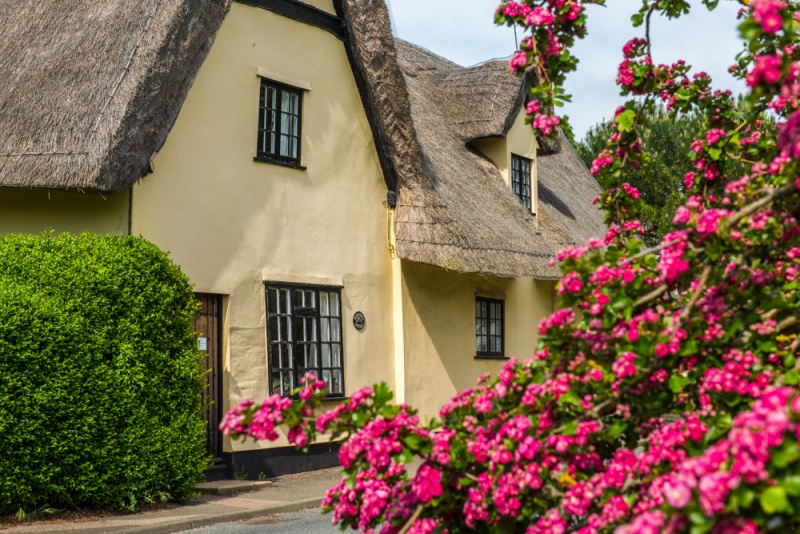 A typically pretty thatched cottage in Chelsworth