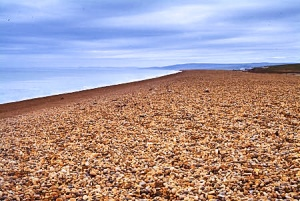 Atop Chesil Beach near the Ferrybridge visitor information centre