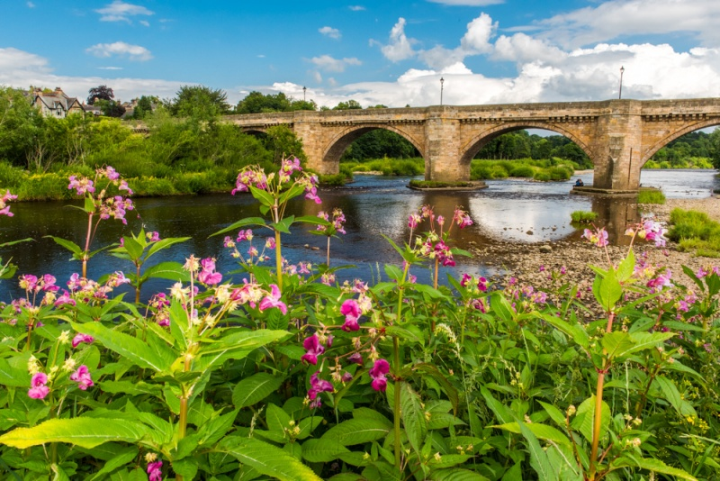 The 1674 bridge across the Tyne at Corbridge