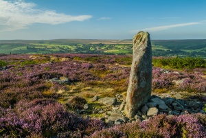 The moors above Danby, North York Moors