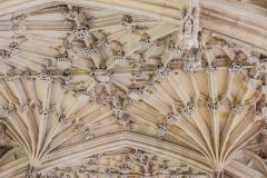 Bodleian Library, Divinity School vaulting, c. 1480