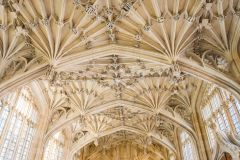 The superb Divinity School vaulting