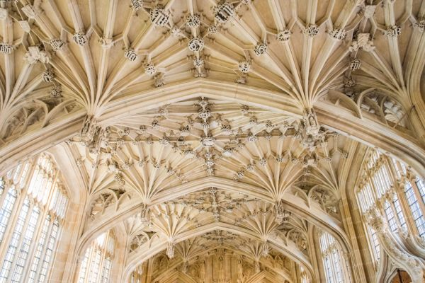 Bodleian Library photo, The superb Divinity School vaulting