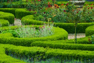 Formal garden beds at Duncombe Park