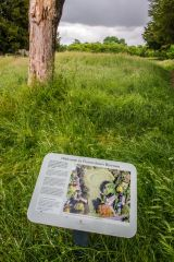 Flowerdown Barrows, The English Heritage information panel