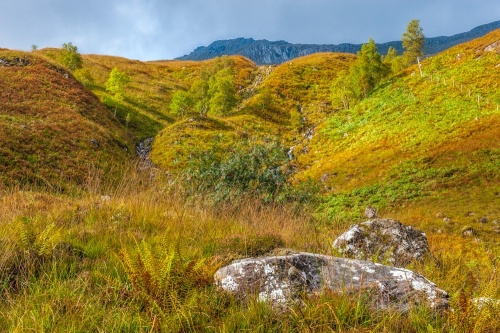 Glen Shiel Battlefield
