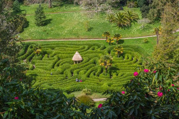 Glendurgan Gardens photo, The maze viewpoint