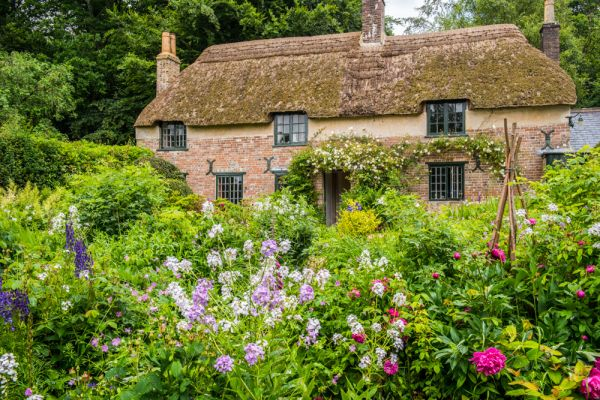Hardy's Cottage photo, The cottage and the colourful garden