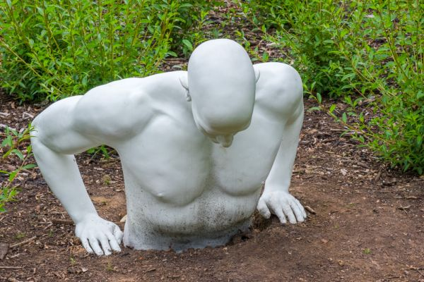 Sir Harold Hillier Gardens photo, An unusual modern sculpture