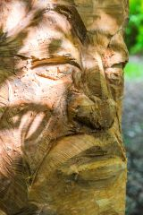 A woodland sculpture carved from a tree trunk