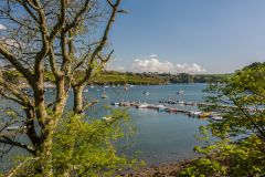 Helford River from the village parking area