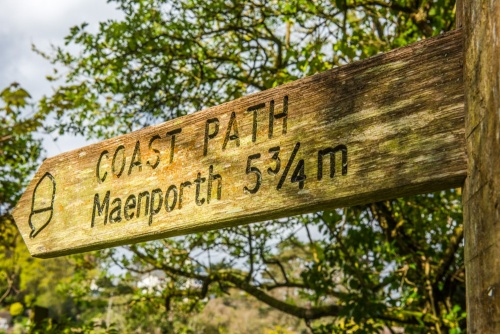 You can explore the Helford area on the coast path