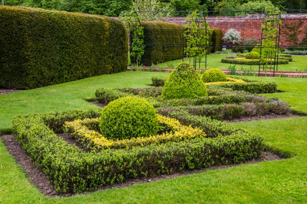 Hoveton Hall Gardens photo, Clipped hedges in the walled garden