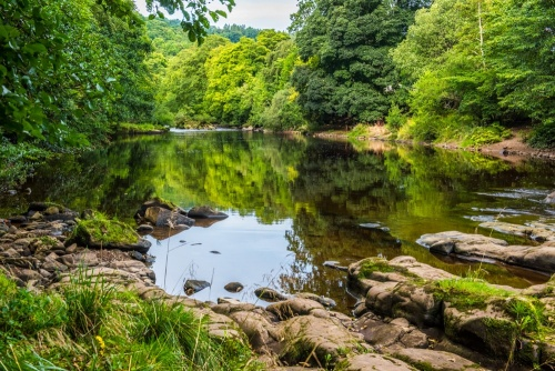 The River Swale, Hudswell Woods
